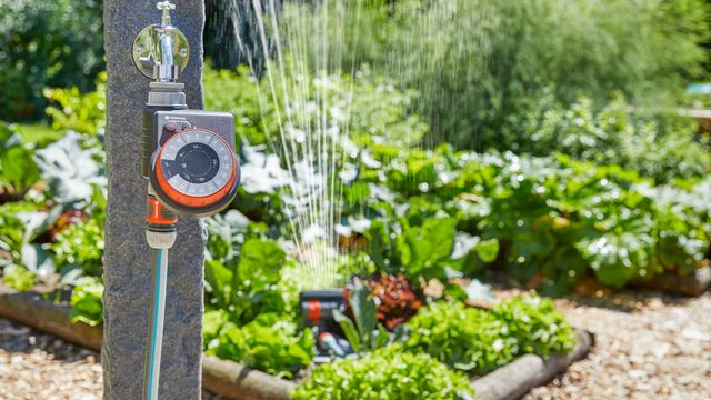 arroser son jardin pendant ses vacances